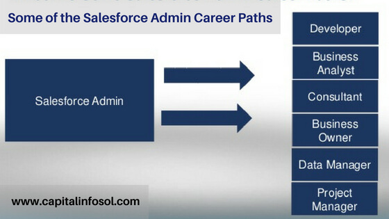 Salesforce admin & developer