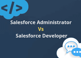 Salesforce Administrator Vs Salesforce Developer